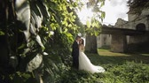 Lovely young caucasian bride and groom in the park near wall with many leafs. Wedding couple. Happy family. Newlyweds in sunbeams. Man and woman in love. Slow motion Stockvideo