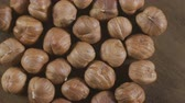 aveleira : Hazelnut closeup. Rotating nuts background, nobody Vídeos