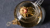 glass teapots : Florescence of green Blooming Tea. Stock Footage