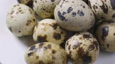studentka : Uncooked quail eggs in pack. Rotating and closeup. Nobody Wideo