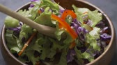 vegeterian : Salad preparation process. Process of mixing fresh salad Stock Footage