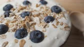 natural yogurt : Composition of a typical genuine breakfast made with yogurt, blueberries, muesli.