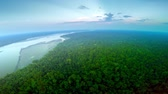 fragility : Aerial Shot Of Amazon Rainforest during Twilight
