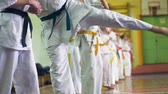 artes marciais : Russia, Novosibirsk, August 15, 2018 A group of people practicing karate strokes indoors. Endurance training in karate