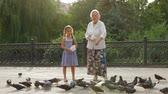 pomba : Granddaughter and grandmother feeding a flock of birds in a park