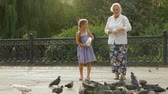 pomba : Granddaughter and grandmother feeding a flock of doves in a park