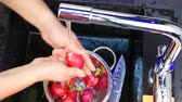 лиса : Wash the radish in the sink Стоковые видеозаписи
