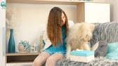 favorito : A girl is giving a box of cookies to a dog. Stock Footage