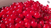 ácido : Close-up of heap of redcurrant berries. More berries fall on top