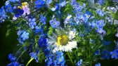 yaprak döken : forget me nots and daisies wildflowers bouquet turning up close up