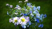 desvanecer : forget me nots and daisies wildflowers bouquet loop turning close up