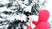 výhonky : Girl tourist taking photos on the phone of snowy trees in the winter forest Dostupné videozáznamy