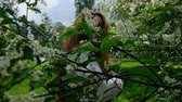 perfume : Sexy European girl model posing on camera in blossoming bird cherry, slow motion. A woman with long lush hair is photographed in the park, slow motion Stock Footage
