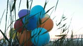 지구 온난화 : Air balloons are stuck in the grass on the sea. Ecology and pollution of nature, garbage on the street