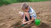 sand pit : Serious little boy digs a pit with a shovel. Kid playing on the beach Stock Footage