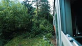 fast moving : Travel in the forest on the narrow-gauge railway, view from the open window of the car in the summer, slow motion Stock Footage