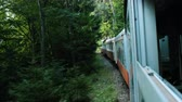 неустойчивый : Travel in the forest on the narrow-gauge railway, view from the open window of the car in the summer