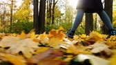 throws up : Woman walking on fallen leaves in golden autumn, slow motion, camera movement