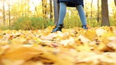 throws up : Womans legs walking on fallen leaves in golden autumn, slow motion, camera movement