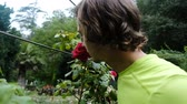 Funny man is smelling a big red rose on a tree, slow motion Stock Footage