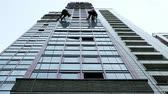 шестерня : Two industrial climbers are washing, cleaning facade of a modern office building