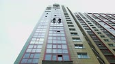 alpinista : Two industrial climbers are washing, cleaning facade of a modern office building