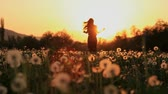 belo : Beautiful Young Woman in a Hippy Dress Running Down a Dandelion Field at Sunset Vídeos