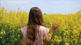 çayır : Young Woman in Retro Dress Walking Through Yellow Field Touching Flowers HD Stok Video