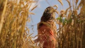modelo : Beautiful Fashion Model Beauty Dress Walking through Wheat Field Passing by HD Vídeos