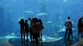 Singapore - AUGUST 5, 2014: People walking at S.E.A. Aquarium in Singapore on August 5 in , Singapore. S.E.A. Aquarium is popular tourist attraction