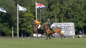 europe : Tseleevo, Moscow region, Russia - July 26, 2014: Aliona Chekhova of Tseleevo Polo club in action during the match against the Oxbridge polo team during the British Polo Day. Oxbridge won 5-4