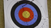 tiro com arco : A target being hit by two arrows... Vídeos