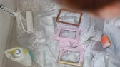 shabby : decorate photo frames