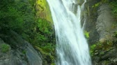corrente : Waterfall, Close up View of Lush Waterfall Stock Footage