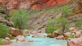 à beira do lago : Stream Flowing in Beautiful Canyon in the Grand Canyon National Park Vídeos