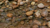 arka plân : Water Rushing Over River Rocks in Stream Stok Video