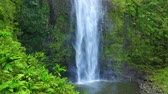 топ : Majestic Lush Tropical Jungle Waterfall In Hawaii