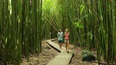 incrível : Couple having fun together outdoors on hike through amazing bamboo forest trail.