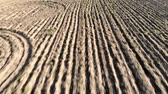 sulco : Aerial backwards flying in farmland plowed field and furrows that draw the dry earth Stock Footage