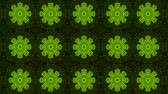 видео : poly art kaleidoscope green black flower for VJ Fractal Background