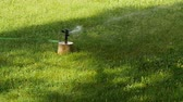 Rotating garden sprinkler slow motion watering grass.