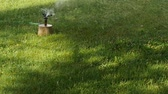 Rotating garden sprinkler slow motion watering grass towards camera. Stock Footage