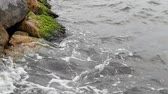 tempestuoso : Waves Hitting Stones on Slow Motion. Stock Footage