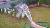 hosepipe : Woman watering plants with hose. Super slow motion. 960fps. Stock Footage