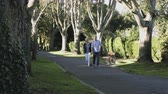 старение : Retired Senior Couple walking in Park with dogs