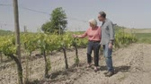 Senior couple on holiday visiting vineyard