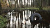 mech : Old tyre and other garbage lies on the waterlogged river bank, environmental pollution. Abuse of environment. Dostupné videozáznamy