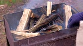 kindle : Bonfire burning trees. Barbecue Grill Flame Fire
