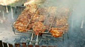 char grilled : The Meat On The Grill. Meat Is Fried On Coals. Camping. Bbq Stock Footage