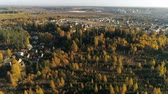 Финляндия : Aerial view of autumn forest. Fall landscape with red, yellow and green trees. Drone video 4k